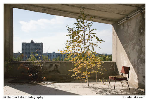 A silver birch tree grows through the floor on the terrace of Hotel Polissia. The hammer and sickle is visable atop the distant appartments.