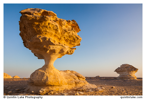 "Aish el-Ghorab ""The Mushrooms"", chalk sculptures, Sahara Beida (White Desert), Egypt"