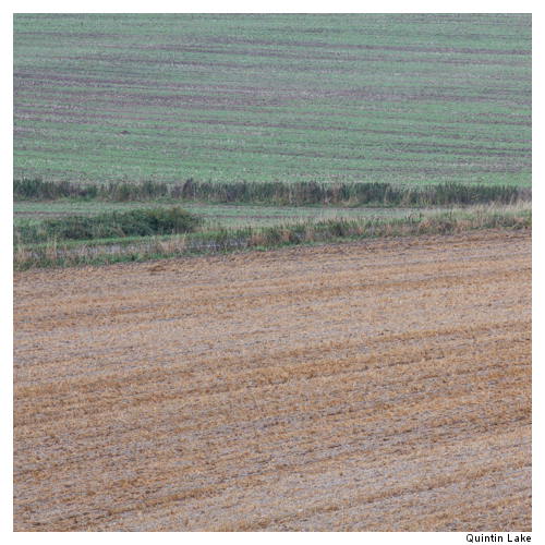 Ridgeway XI, Wiltshire