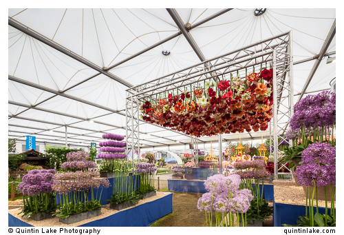 The Great Pavilion by De Boer. RHS Chelsea Flower Show,  2014