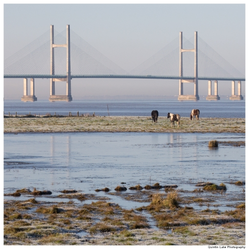 The Severn Way: Severn Bridge to Avonmouth