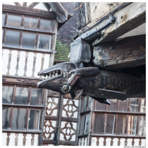 Tudor half-timbered houses of Shrewsbury, Shropshire, England
