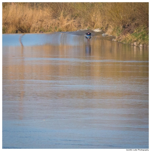 Five Star Severn Bore viewed from Minsterworth, Gloucestershire