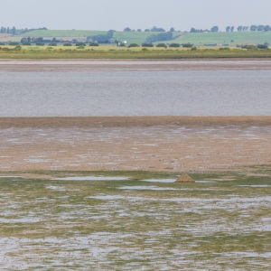 Isle of Sheppey and the Swale II.
