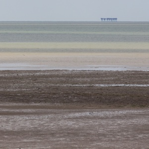 Red Sands, Maunsell Forts from Seasalter.