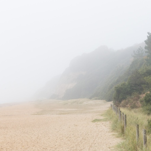Fog at Highcliffe, Dorset.