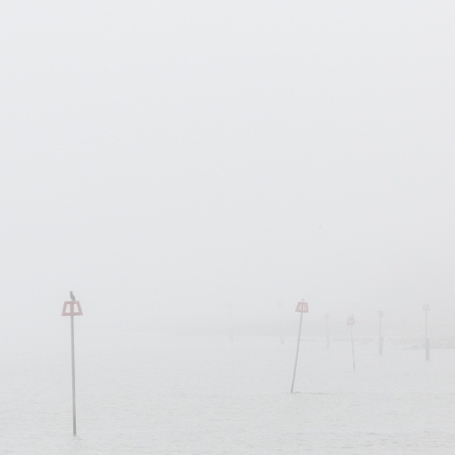 Foggy Groynes at Mudeford, Dorset.
