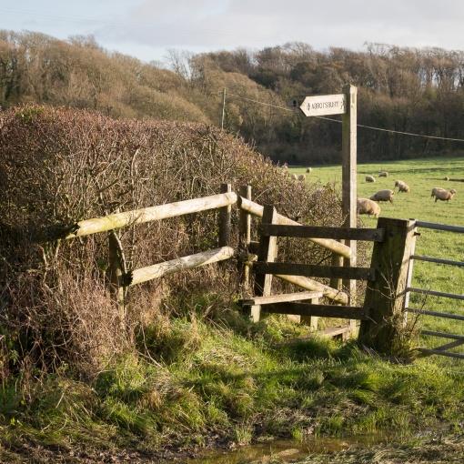 Footpath to Abbotsbury, Dorset.