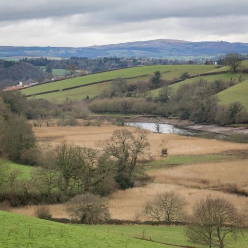 River Dart with Dartmoor beyond, Devon.