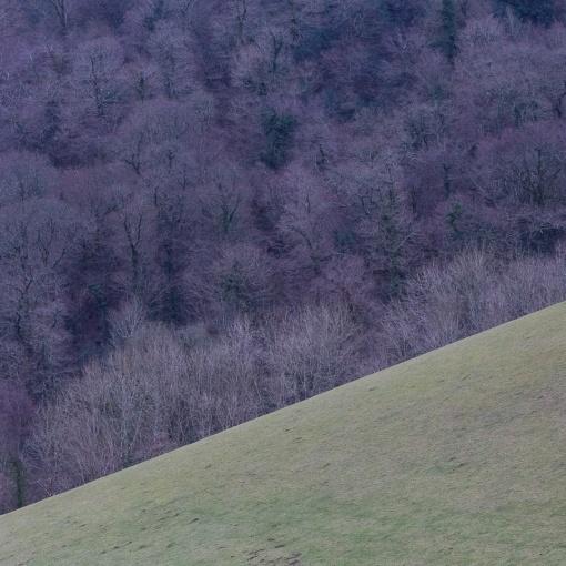 Lower Dittisham, Devon.