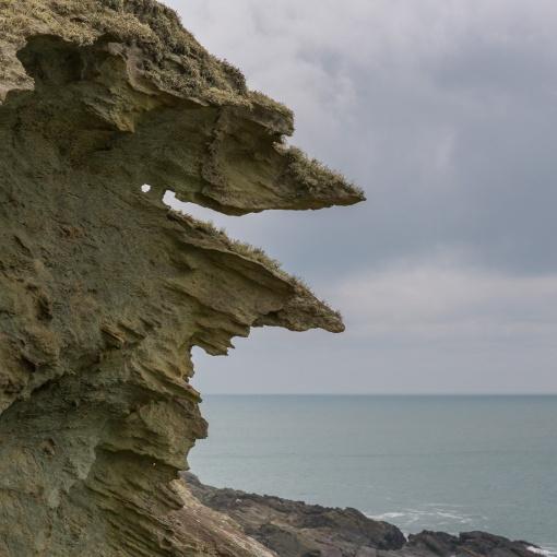 Elender Cove, Devon.