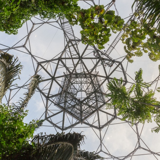Rainforest Lookout, Eden Project, Cornwall.