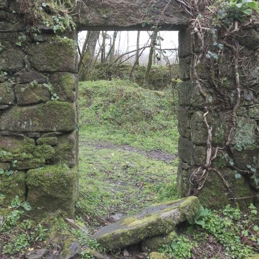 Ruined mill near Gweek, Cornwall.