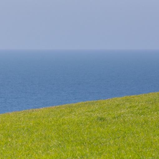 Halzephron Cliff I, Cornwall.