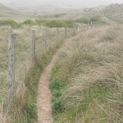 Penhale Sands, Cornwall.
