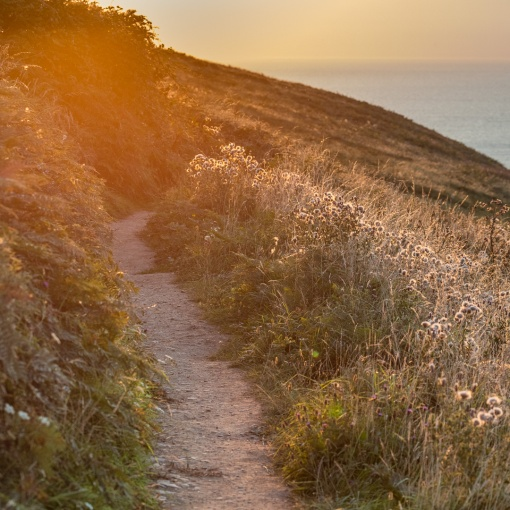 Last light, coast path, Baggy Point, Devon,