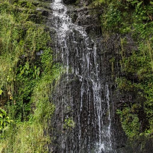 Waterfall, Woody Bay, Exmoor, Devon.