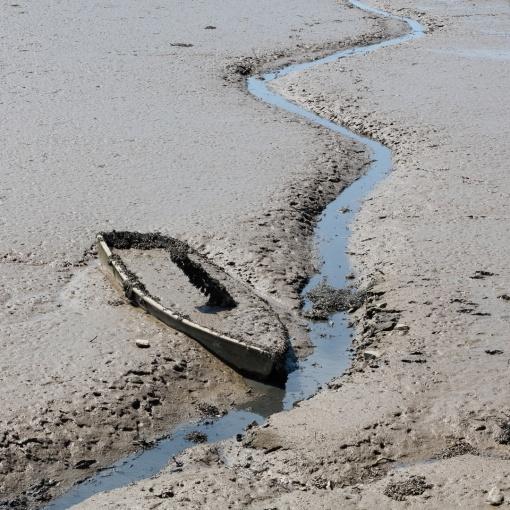 Sinking in, River Taw, Devon.