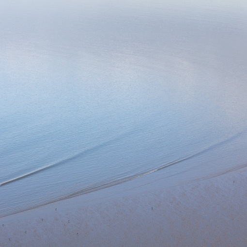 Oystercatchers, Broughton Bay, Gower, Glamorgan.