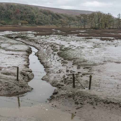 Flooded Fields, Cwm Ivy Marsh, Gower, Glamorgan.