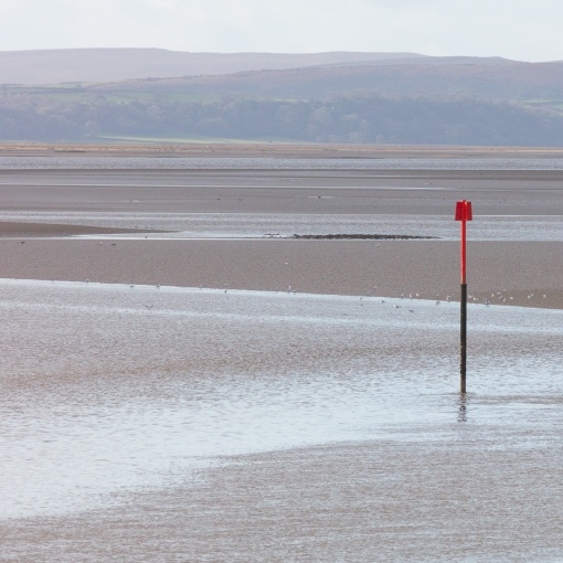 River Loughor, Dyfed.