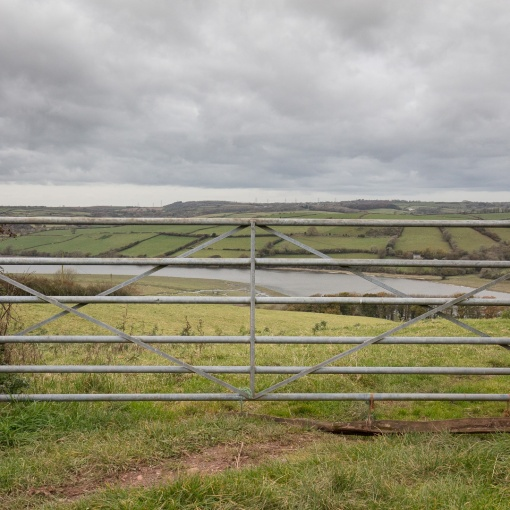 River Towy, Near Carmarthen, Dyfed.