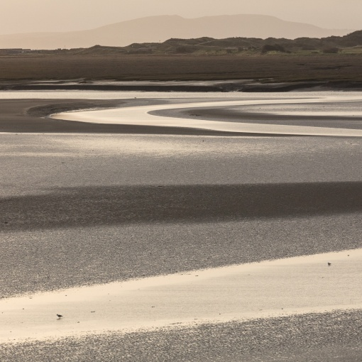 First light, River Taf, Laugharne, Dyfed.