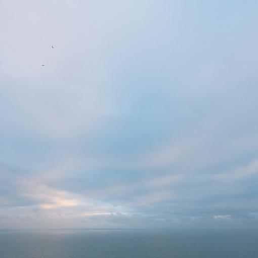 Flight, St Bride's Bay, Pembrokeshire.